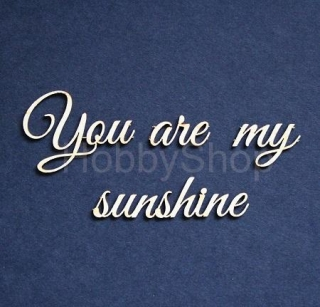 Výrez z lepenky / nápis YOU ARE MY SUNSHINE