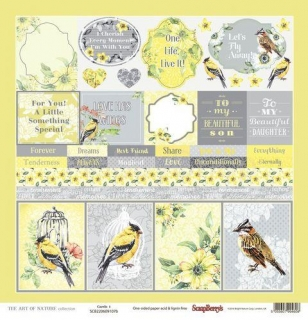 The Art of Nature Cards 1 - scrapbook papier 12x12 inch