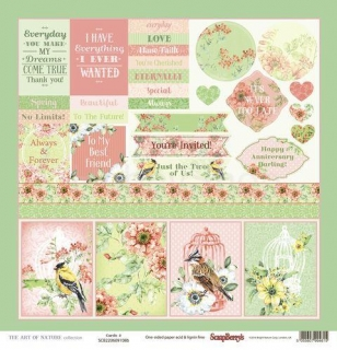 The Art of Nature Cards 2 - scrapbook papier 12x12 inch