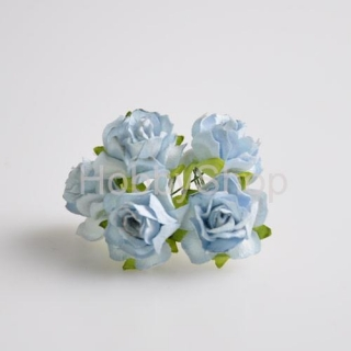 Wild roses_30mm/ pale blue